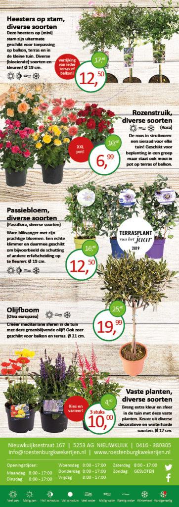 Folder aanbiedingen mei - Roestenburg Kwekerijen