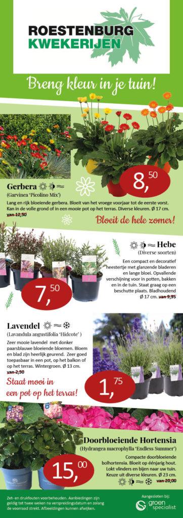 Aanbieding planten Roestenburg Kwekerijen